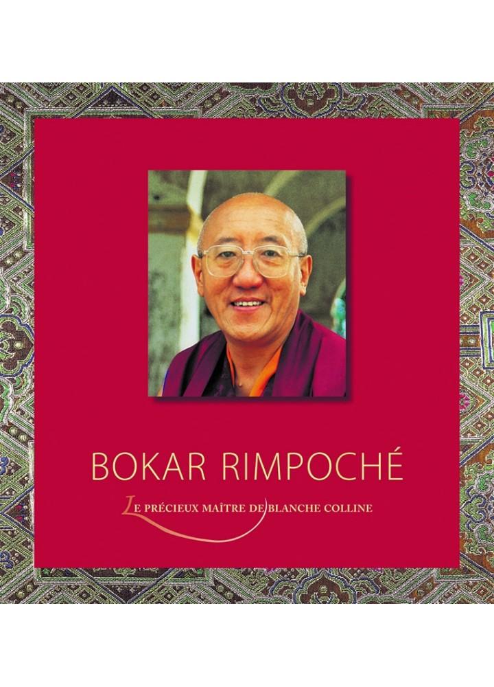 Beau livre du bouddhisme tibétain paru aux éditions Claire Lumière. Grand Maitre du bouddhisme. Tulkou, tulku