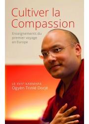 Livre des éditions Claire Lumière. Bouddhisme tibétain. Sagesse, enseignement grand maître. Compassion et amour