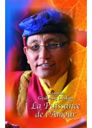 Livre des éditions Claire Lumière. Bouddhisme tibétain. Enseignement d'un grand maître sur la compassion et la sagesse