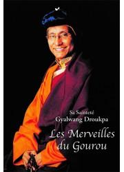 Livre des éditions Claire Lumière. Bouddhisme tibétain. Grand maître et son disciple. pratique du bouddhisme et méditation