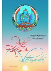 mahamoudra karmapa souhaits