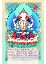 Livre des éditions Claire Lumière. Bouddhisme tibétain.